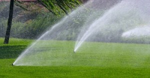 irrigation-sprinklers-installation-north-bend-wa