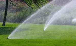 Irrigation-Sprinklers-Installation-Lakeland-Hills-WA