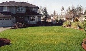 Lawn-Aeration-North-Bend-WA