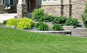 Lawn-Maintenance-North-Bend