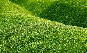 Synthetic-Grass-Auburn
