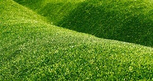 synthetic-grass-snoqualmie-wa