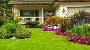 spring-yard-clean-up-enumclaw-wa