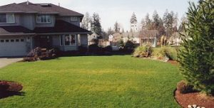artificial-grass-sammamish-wa