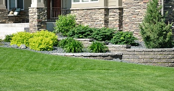 Lawn-Services-Federal-Way-WA