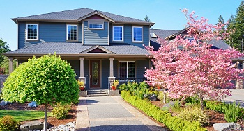 Tree-Pruning-Sammamish-WA