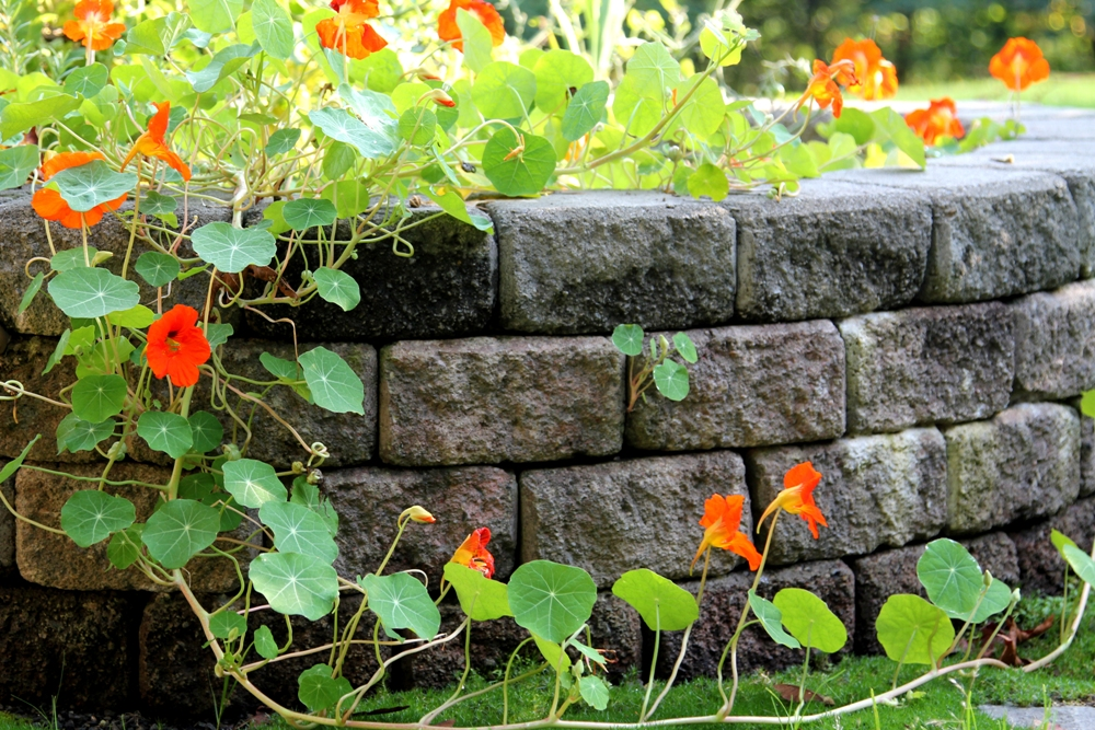 brick-retaining-wall-seatac-wa