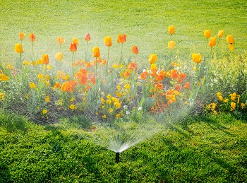 irrigation-services-milton-wa