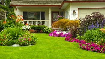 landscape-renovations-bellevue-wa