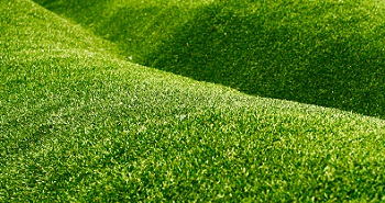 synthetic-grass-buckley-wa
