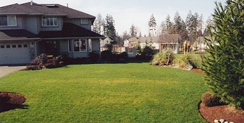 synthetic-grass-seatac-wa